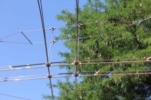 HB9LU-2016-08-08-Antenne-002
